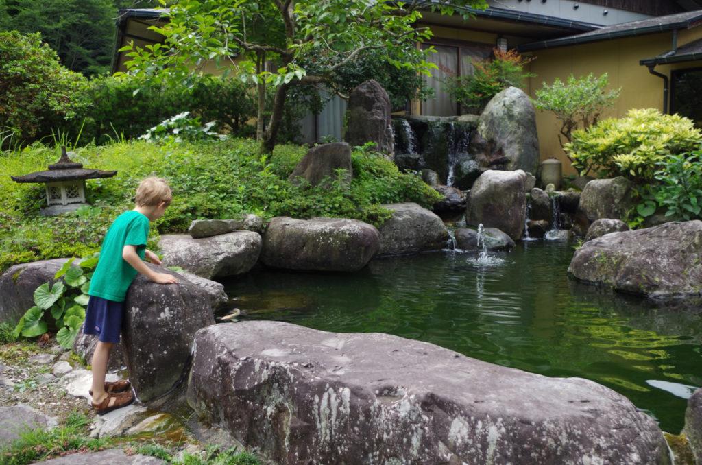 Koi Pond at our Ryokan