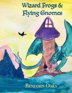 wizards-frogs-and-flying-gnomes-book